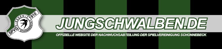 www.jungschwalben.de
